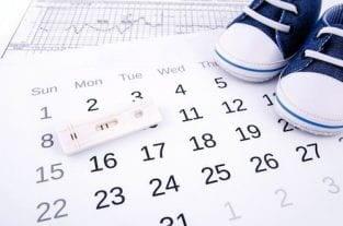Ovulation Calendar - Free Fertility Ovulation Calendar