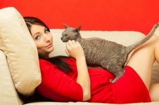 Toxoplasmosis and Pregnancy – Should I Get Rid Of My Cat?